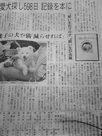 4月11日「朝日新聞朝刊 千葉版」