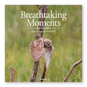 書籍画像「Breathtaking Moments」