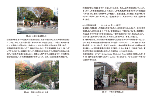 国内外植物園巡りを楽しむ 本文画像2